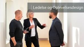 Ledelse og organisering af velfærdsinnovation