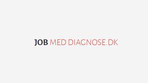 Besøg jobmeddiagnose.dk