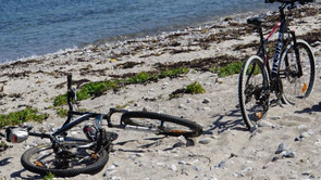 Cykler skal skabe lighed i sundhed