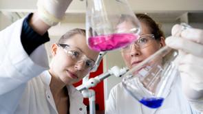 Faglig brobygning i bioteknologi
